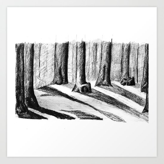 Trees Casting Shadows in the Woods Art Print