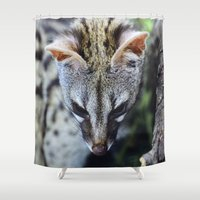 "wildlife Shower Curtains featuring ""Beautiful Genet"". Wildlife by Guido Montañés"