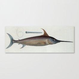 Vintage Illustration of a Swordfish (1785) Canvas Print
