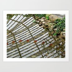 Reflected Lanterns Art Print
