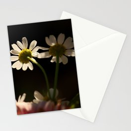 ... they belong together Stationery Cards
