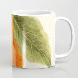 Vintage Painting of an Orange Coffee Mug