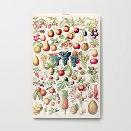 Adolphe Millot - Fruits pour tous - French vintage poster Metal Print