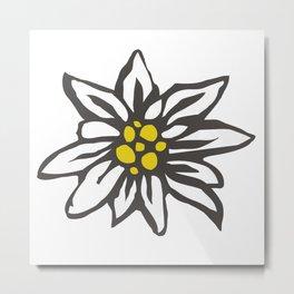 Edelweiss flower Metal Print