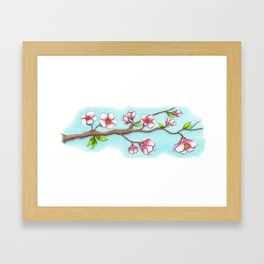 Almond Tree Framed Art Print
