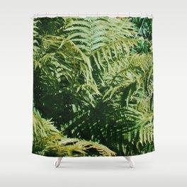 Fern'd Gully Shower Curtain