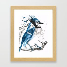 True Blue Jay Framed Art Print