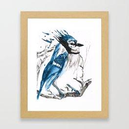 True Blue Jay Framed Art Print