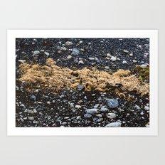 Land on the rocks Art Print