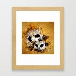 meerkat suricate mongoose ws Framed Art Print
