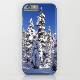 Snow covered trees in the forest. Winter day with blue sky. iPhone Case