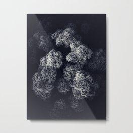 Fonty Metal Print