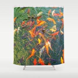 swimming fish in Shanghai Shower Curtain