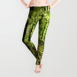 Walk in the Park | Father Daughter Stroll in a Rainforest Love Calm Serene Leggings