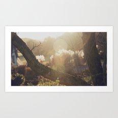 garden sunburst... Art Print