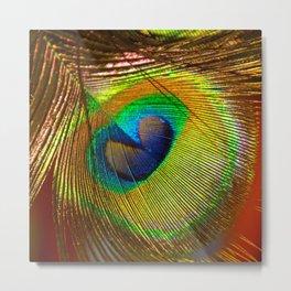 Peacock's Love Metal Print