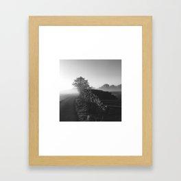 Timber - Black Framed Art Print
