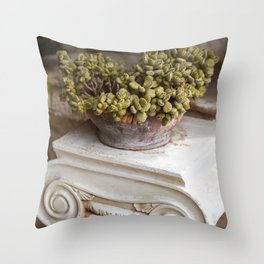 Ancient Greece cactus Throw Pillow
