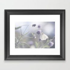 Lavender loving butterfly Framed Art Print