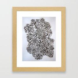 Watercolour pebbles and succulents Framed Art Print