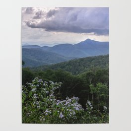 Smoky Mountain Wildflower Adventure - Nature Photography Poster