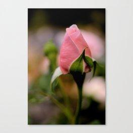 I wish you Love Canvas Print