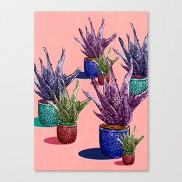 Watermelonandrea Canvas Print