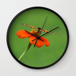 Butterfly on Orange Mexican Sunflower Wall Clock