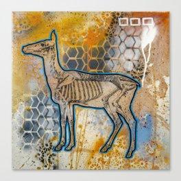 Deer Skeleton Canvas Print