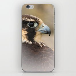 Vignetted Profile of a Peregrine Falcon iPhone Skin