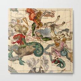 Constellation Chart 1693b Metal Print
