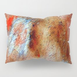 Abstract Vintage x Pillow Sham
