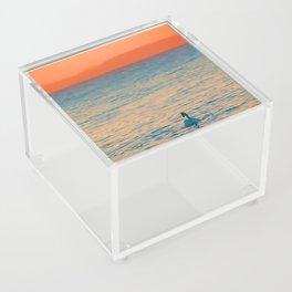 Lonesome Swan Acrylic Box