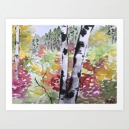 Birch Tree in Autumn Art Print