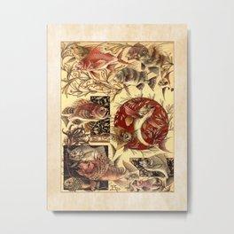 Anton Seder Fish II Metal Print