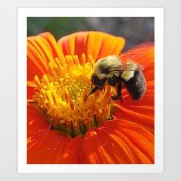 Bee Charmer Art Print
