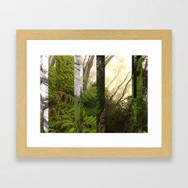Rainforest No.10 Framed Art Print