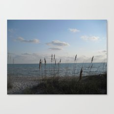 Nature's Paint Brushes Canvas Print