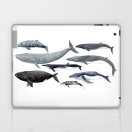 Whales and right whale Laptop & iPad Skin