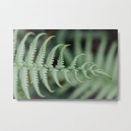 Little Plant Metal Print