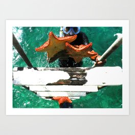 Sea Stars Rise Art Print