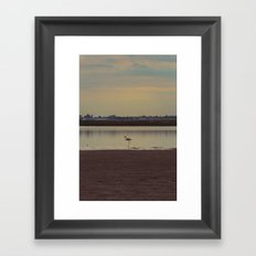 LONELY FLAMINGO Framed Art Print