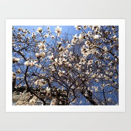 Spring and the City Art Print