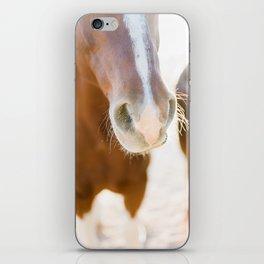 Nosey iPhone Skin