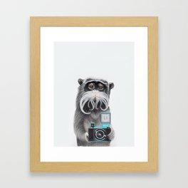 Titi Monkey Taking a Selfie / Mono Emperador se hace un selfie Framed Art Print