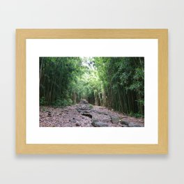 Serenity in the Bamboo Forest Framed Art Print