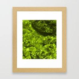 Shallows green tint Framed Art Print