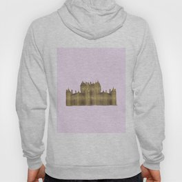 Golden castle on a pink background Hoody