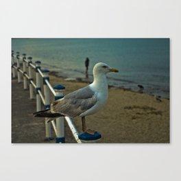 Beach King Canvas Print