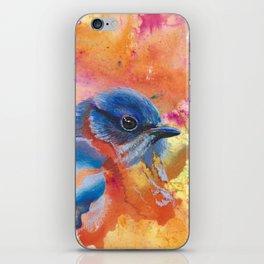Eastern Bluebird iPhone Skin